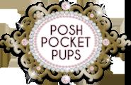 Logo Tiny Teacup pups